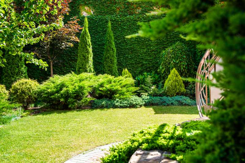we certainly strive to only provide exceptional quality timely completion of work - Toms Lawn And Garden